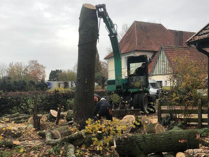 Forst- und Gruenpflege DVB Jakobs Bad Essen